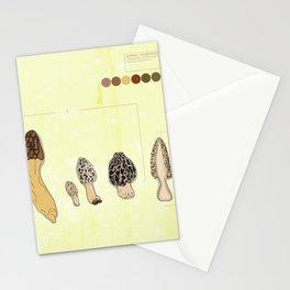 Morel Mushroom Detail 2 Stationery Cards
