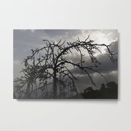 Deadly tree silhouette on cloudy background Metal Print