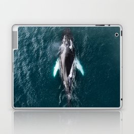 Humpback Whale in Iceland - Wildlife Photography Laptop & iPad Skin