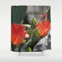Orange Cactus Shower Curtain