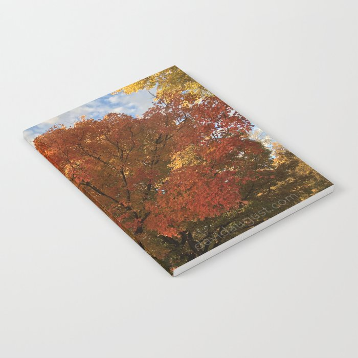 Fall Leaves on Tree Notebook