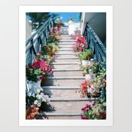 A Staircase of Flowers Art Print