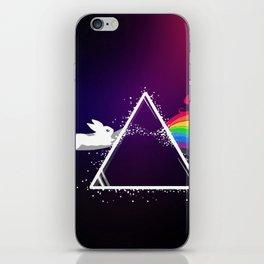 Rainbow Evolution iPhone Skin