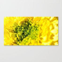 Green birth  Canvas Print