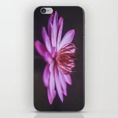 Purple Lotus iPhone & iPod Skin