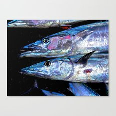 Catch of the Day: Wahoo Canvas Print