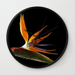 Bird of Paradise Flower Wall Clock
