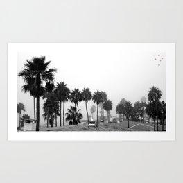 Palm Trees of Rosarito Art Print