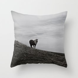 A Pony in the Pyrenees Throw Pillow