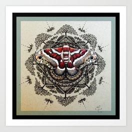 Red Moth Mandala With Border Art Print