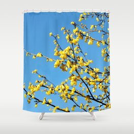 boom boom bloom Shower Curtain