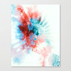 reryef Canvas Print