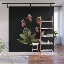 Pink Lady's slipper clump Wall Mural