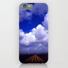 Tulip Trail iPhone 6s Slim Case