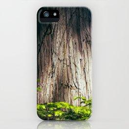 Cedar iPhone Case