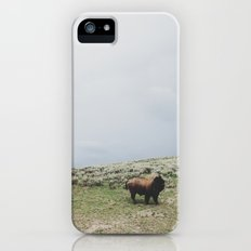 Hillside Bison Slim Case iPhone (5, 5s)