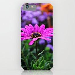 Sunnny pink flower  iPhone Case