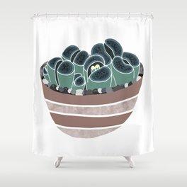 Lithops Shower Curtain