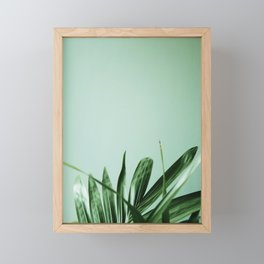 Minimalist green succulent Framed Mini Art Print