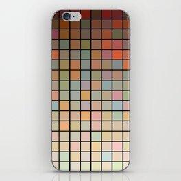 Breugel iPhone Skin