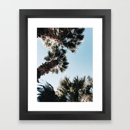 Among the Palms Framed Art Print