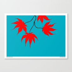 Japanese Maple Leaves Canvas Print