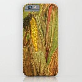 The last ear of corn iPhone Case
