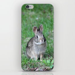 Bunny 2 iPhone Skin