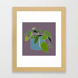 Heart Leaf Plant Framed Art Print