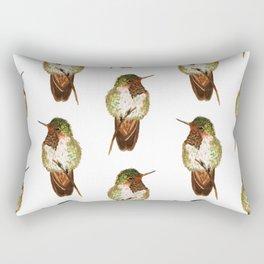 Volcano Hummingbird Rectangular Pillow