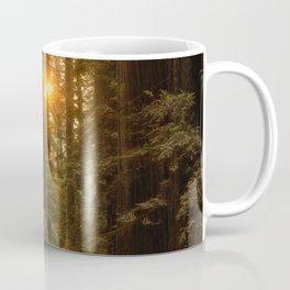 Sunrise in the Redwoods Coffee Mug