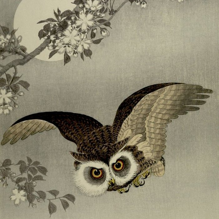 Japanese Owl and Moon Comforters