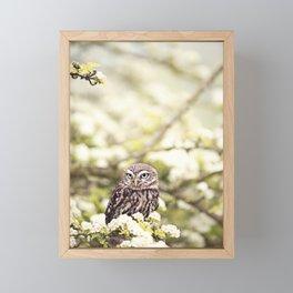 Cute Owl Framed Mini Art Print
