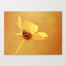 Buttercup Lady Canvas Print