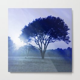 sunset tree blue photochrom tinted aesthetic landscape art altered photography Metal Print