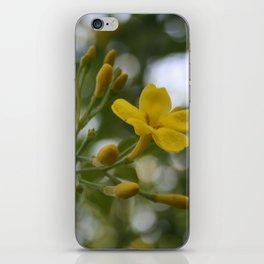 Shaded Carolina Jessamine iPhone Skin