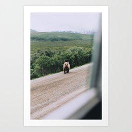 Grizzly Cub Art Print