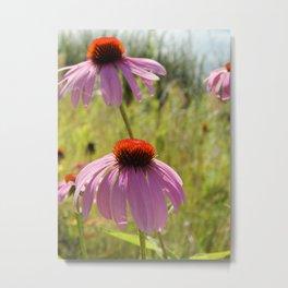 Flowers Along the Lake Metal Print