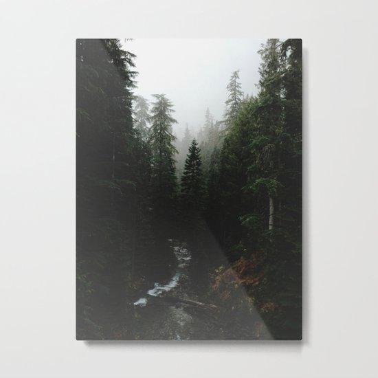 Rainier Creek Metal Print