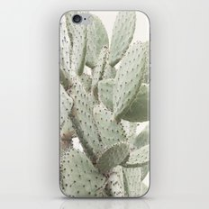 Cactus 4 iPhone & iPod Skin