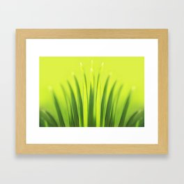 Palm Tree Sunlight Leaf Tropical Summer Green Yellow Hawaii Pattern Framed Art Print