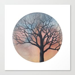 Tree on a beautiful January afternoon Canvas Print