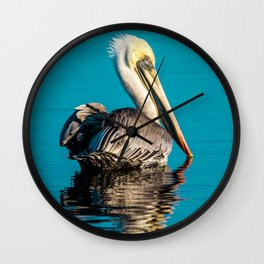 Bird - Brown Pelican - Study 4 Wall Clock