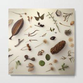 Botanical Party 008 Metal Print