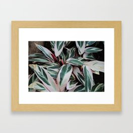 Beleaf in You Framed Art Print