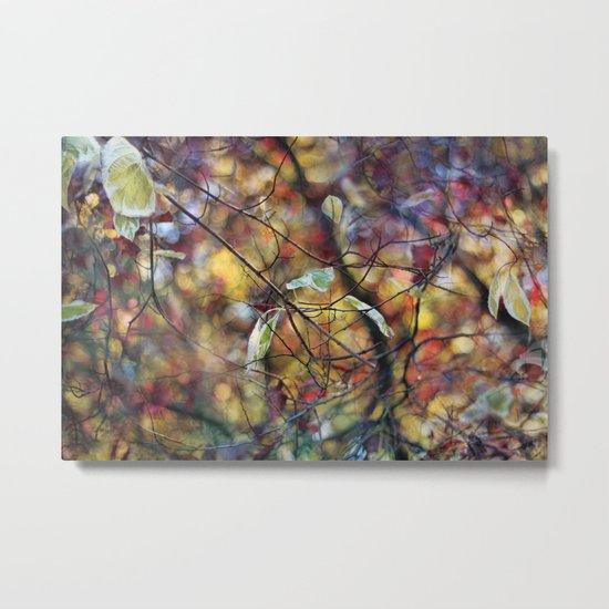 Autumn Rainbows Metal Print