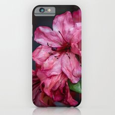A Whole Bunch of Pink Slim Case iPhone 6s