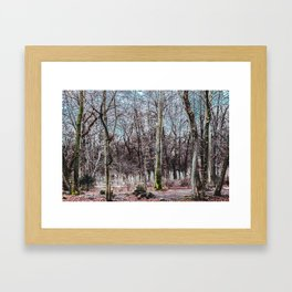 Red leaves and freckles. Can I call you redheads, dear trees? Framed Art Print
