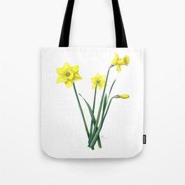 Yellow Daffodils Botanical Illustration Tote Bag