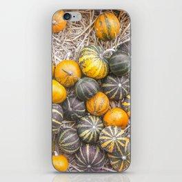 Pumpkin Life iPhone Skin